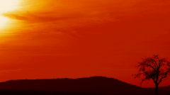 Venus Sunset Stock Footage