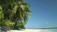 Tropcial beach - background video Stock Footage