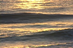 Golden Ocean waves - stock footage