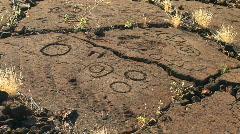 Hawaiian Petroglyphs on the Big Island of Hawaii Stock Footage