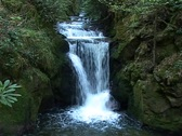 Geroldsauer Waterfall Stock Footage