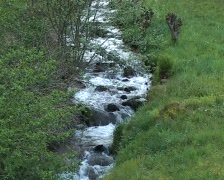 Small rivulet Stock Footage