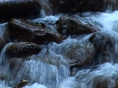 Tiny Waterfall Stock Footage