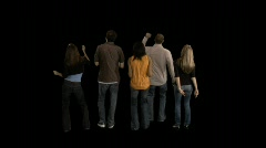 Concert Crowd from Rear Stock Footage