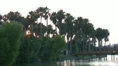 Palm trees across pond setting sun HD Stock Footage