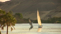 Sailboats at sunset in Egypt Stock Footage