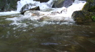 Stock Video Footage of Pure Water