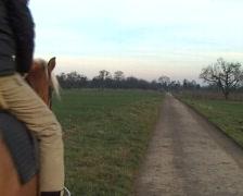 Woman on horseback Stock Footage