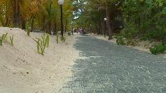 Stock Video Footage of jm184-DR-Beach Walkway
