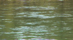 Yellowstone River - close up Stock Footage