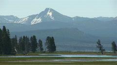Yellowstone scenery Stock Footage