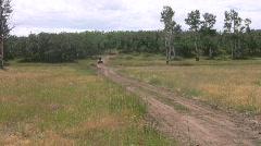 Four wheel ATV im mountain meadow HD - stock footage
