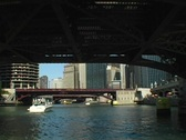 Chicago River Tour 4 Stock Footage