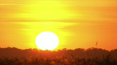 Clouds at sunset time-lapse 7 - stock footage