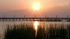 Fishing pier weeds sunset HD Stock Footage