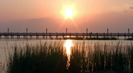 Stock Video Footage of Fishing pier weeds sunset HD