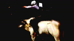 Rodeo bull ride 2--Slow Stock Footage