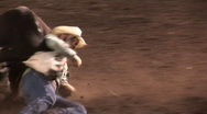Steer Wrestling Stock Footage