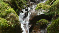 Waterfall with moss 2 Stock Footage