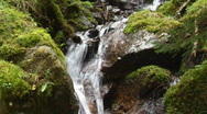 Stock Video Footage of waterfall with moss 2