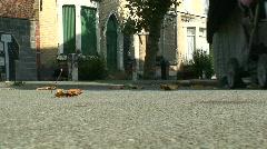 Urban Decay. HD 1080i Stock Footage