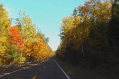 AutumnDrive3 NS DV NTSC Stock Footage
