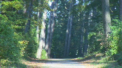 Running up road center part I Stock Footage