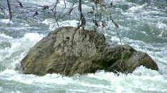 River rapids through cypress trees zoom out HD Stock Footage