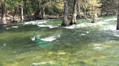Canoe sunk in river HD Stock Footage