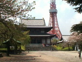 Stock Video Footage of Tokyo Tower and Zojo Temple