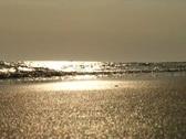 Beach Stock Footage