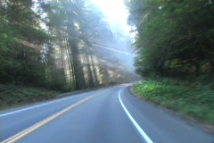 Redwood Hwy. Stock Footage