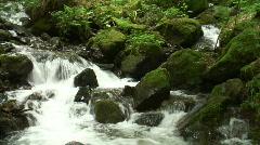 Panshot  of a mountain creek - stock footage