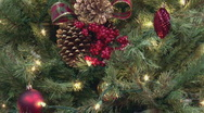 Stock Video Footage of Christmas Tree