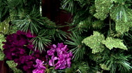 Christmas and holiday flowers and decorations Stock Footage
