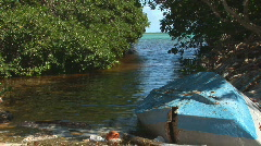 Old rowboats & mangrove trees Stock Footage
