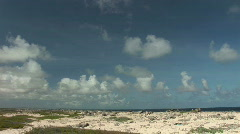 Rough shore - extreme wide Stock Footage