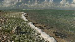 Salt  lake - foam Stock Footage
