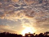 Sunset 60 Stock Footage