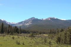 NTSC: Rocky Mountains & elk Stock Footage