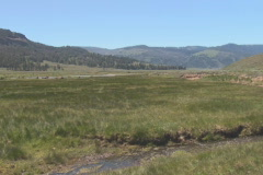 NTSC: Lamar Valley Stock Footage