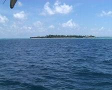 Maldivian Island Stock Footage