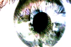 Sci Fi and Horror Film Eyes Stock Footage