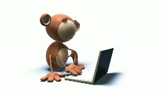 Monkey using a laptop Stock Footage