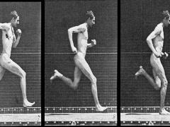 Muybridge Man Running - stock footage