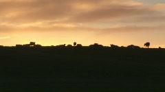 Irish landscape Stock Footage