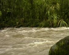 Rio Mindo - stock footage