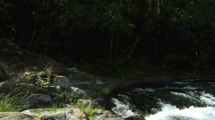 Flowing creek - stock footage