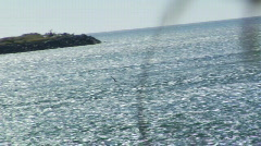 Seagull Flying Over Water Stock Footage