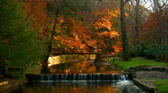 Autumn day end of fall with a stream part four Stock Footage